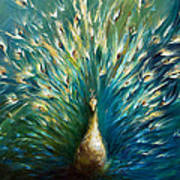 Showoff 3  White Peacock Print by Dina Dargo