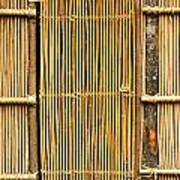 Simple Bamboo Door Print by Yali Shi