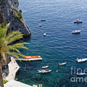 Small Boats And A Palm Tree Print by George Oze