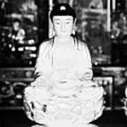 Small Golden Buddha Statue In Monastery Of Ten Thousand Buddhas Sha Tin New Territories Hong Kong Print by Joe Fox