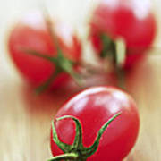Small Tomatoes Print by Elena Elisseeva
