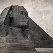 Sphinx Vintage Photo Print by Jane Rix