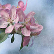 Spring Blossoms For The Cure Print by Kim Hojnacki