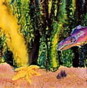 Star Fish Print by Carolyn Doe