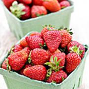 Strawberries Print by Elena Elisseeva