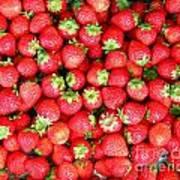 Strawberries  Print by Yali Shi