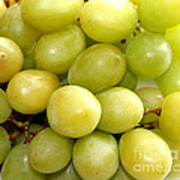 Sweet Green Grapes Print by Barbara Griffin