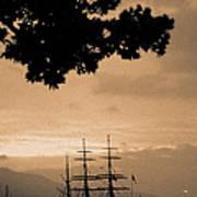 Tall Ship Gorch Fock Print by Gaspar Avila