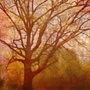 The Fairy Tree Print by Brett Pfister