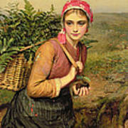 The Fern Gatherer Print by Charles Sillem Lidderdale