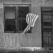 The Flag A Window And A Door Print by James Steele