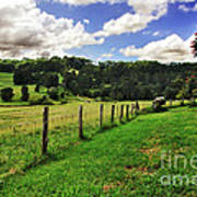 The Green Green Grass Of Home Print by Kaye Menner
