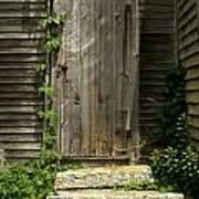 The Ivied Door Print by Theresa Willingham