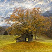 The Old Oak Tree Print by Debra and Dave Vanderlaan