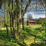 The Old River Shed Print by Pamela Baker