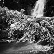 the river at the Gleno or Glenoe Waterfall beauty spot county antrim Print by Joe Fox