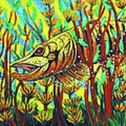 Tiger Muskie Print by Bob Crawford