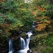 Torc Waterfall, Ireland,co Kerry Print by The Irish Image Collection