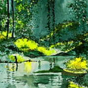 Tranquil 1 Print by Anil Nene