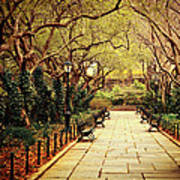 Urban Forest Primeval - Central Park Conservatory Garden In The Spring Print by Vivienne Gucwa