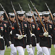 U.s. Marines March By During The Pass Print by Stocktrek Images