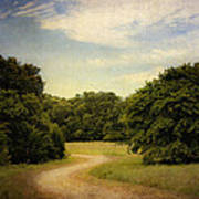 Wandering Path II Print by Tamyra Ayles
