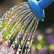 Watering Flowers Print by Elena Elisseeva