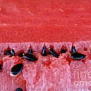 Watermelon Seeds Print by Susan Herber