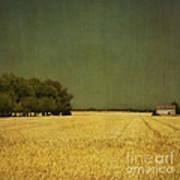 White Barn Print by Paul Grand