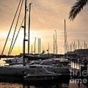 Yachts At Sunset Print by Carlos Caetano