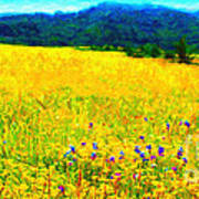 Yellow Hills . Long Cut Print by Wingsdomain Art and Photography