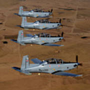 A Formation Of Iraqi Air Force T-6 Print by Stocktrek Images