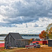 Cranberry Farming Print by Gina Cormier
