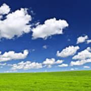 Green Rolling Hills Under Blue Sky Print by Elena Elisseeva