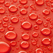 Red Water Drops Print by Blink Images