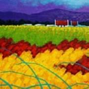 Spring Meadow Print by John  Nolan