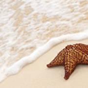 Starfish And Ocean Wave Print by Elena Elisseeva
