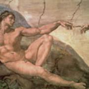 The Creation Of Adam Print by Michelangelo Buonarroti