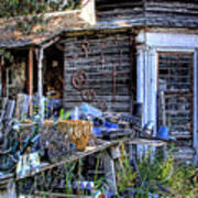 The Old Shed Print by David Patterson