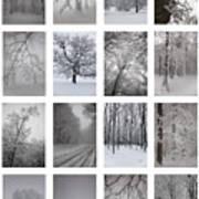 Winter Time Print by Gabriela Insuratelu