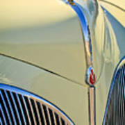 1941 Lincoln Continental Cabriolet V12 Grille Print by Jill Reger