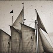 Schooner Pride Tall Ship Charleston Sc Print by Dustin K Ryan