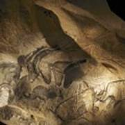 Stone-age Cave Paintings, Chauvet, France Print by Javier Truebamsf