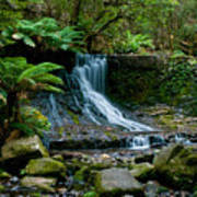 Waterfall In Deep Forest Print by Ulrich Schade
