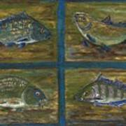 4 Fishes Print by Anna Folkartanna Maciejewska-Dyba