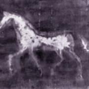 Horse Print by Julie Niemela