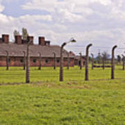 Auschwitz Birkenau Concentration Camp. Print by Fernando Barozza