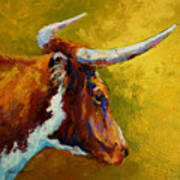 A Couple Of Pointers - Longhorn Steer Print by Marion Rose