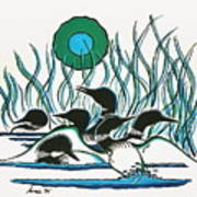A Family Of Loons Print by Arnold Isbister