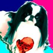A Japanese Chin And His Toy Print by Kathleen Sepulveda